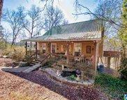 415 Mountain Springs Estates, Odenville image