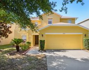 10435 Frog Pond Drive, Riverview image