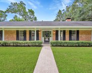223 Wickwood Drive, Spring image