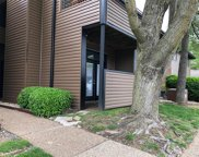 13827 Amiot Unit #A, St Louis image