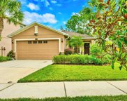 7861 Tuscany Woods Drive, Tampa image