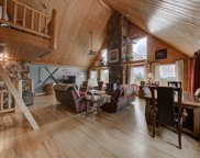 31551 Black Widow Drive, Conifer image