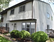 7253 West Hickory Creek Drive Unit 7253, Frankfort image