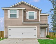 5807 Snapping Turtle Road, Cove image