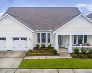 244 Warbler Way, Summerville image