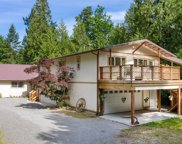 16627 244th Place SE, Issaquah image