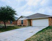 4941 Water Ridge Lane, Fort Worth image