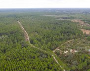 500 Volusian Forest Trail, Pierson image
