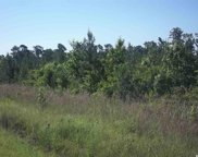00 Pawley Swamp Rd., Conway image