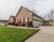 11336 Woodcliff Drive, Knoxville image