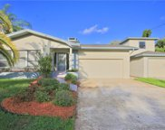 3150 S Canal Drive, Palm Harbor image