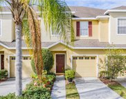 4555 Amberly Oaks Court, Tampa image