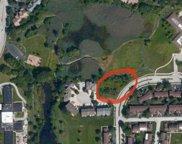 16320 Brementowne Drive, Tinley Park image