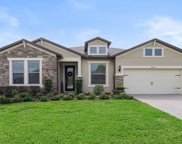 30215 Bretton Loop, Mount Dora image