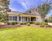 31 Redtail Drive, Bluffton image