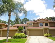 8217 Breeze Cove Lane, Orlando image