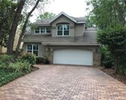 13124 Greengage Lane, Tampa image