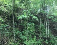 lot 16 N Clear Fork Road, Sevierville image