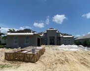3245 Cullowee Ln, Naples image
