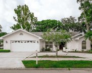 105 Tanglewood Court, Safety Harbor image