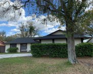 14013 Cherry Lake Drive, Tampa image
