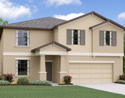 10022 Rose Petal Place, Riverview image