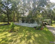 14615 Pace Rd, Clinton image