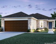 10411 Big Spring Lane, San Antonio image