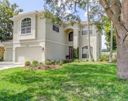 4663 Ayron Terrace, Palm Harbor image