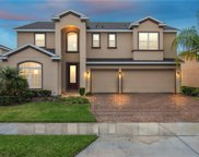 14559 Black Lake Preserve Street, Winter Garden image