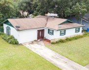 7337 Sequoia Drive, Tampa image