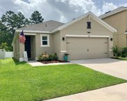125 Lacewing Place, Valrico image