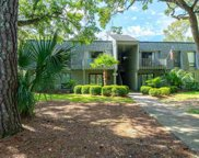 178 Salt Marsh Circle Unit 30G, Pawleys Island image