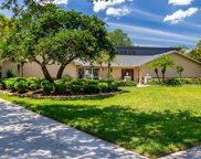 4228 Winding Willow Drive, Tampa image
