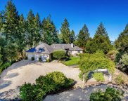 454 Kortum Canyon Road, Calistoga image