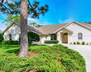 8267 Shadow Pine Way, Sarasota image