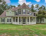 265 DECOY RD, Green Cove Springs image