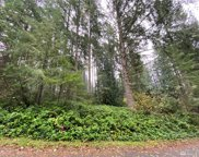 11025 Spruce Dr, Anderson Island image