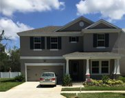 14724 Rocky Brook Drive, Tampa image