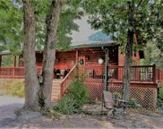 335 Goose Point, Spring City image