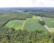 58 AC Wedgewood Drive, West Suffolk image