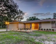 30403 Palm Lane, Wesley Chapel image