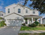 11532 Balintore Drive, Riverview image