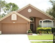12423 Glenfield Avenue, Tampa image