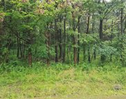 Lot 2&3 Indianola Rd, Indiana TWP - NAL image