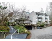 2733 Atlin Place Unit 309, Coquitlam image
