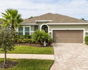 11810 Frost Aster Drive, Riverview image
