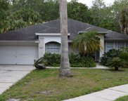 13514 Tufts Place, Tampa image