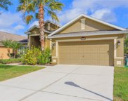 8204 Myrtle Point Way, Tampa image