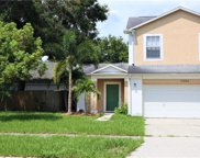 10244 Allenwood Drive, Riverview image